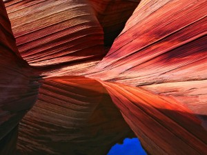 Agua en Paria Canyon-Vermilion Cliffs Wilderness