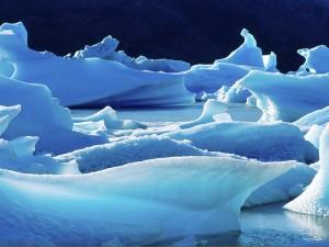 Glaciar Grey (Parque nacional Torres del Paine)