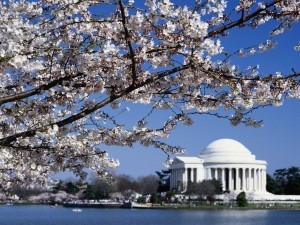 Vista primaveral del Monumento a Thomas Jefferson (Washington D. C.)