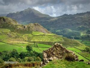 Más allá de las verdes colinas