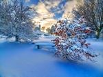 Espectacular paisaje invernal