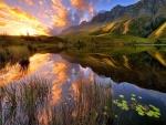 Bello paisaje natural