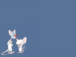 Dos divertidos ratones