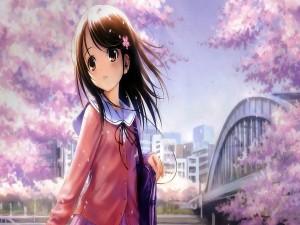 Chica anime caminando entre cerezos