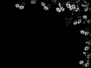 Mariposa junto a las flores