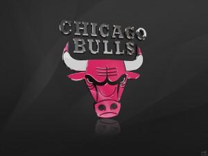 Chicago Bulls 3D