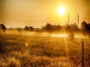 Sol iluminando el campo al amanecer