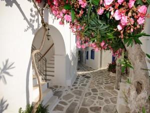 Casas con flores (Santorini, Grecia)