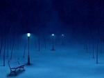 Noche de invierno iluminada