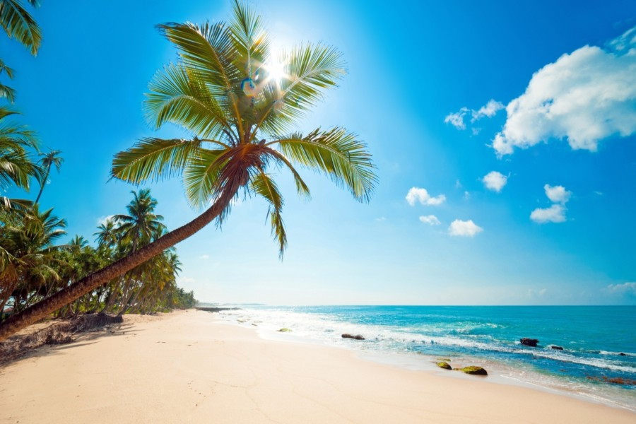 Sol iluminando la hermosa playa