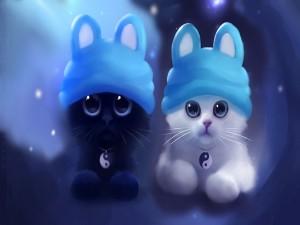 Dos lindos gatos