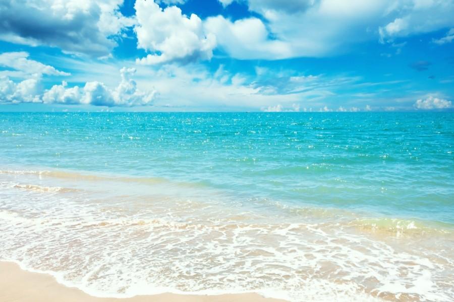 Bonito día en el mar
