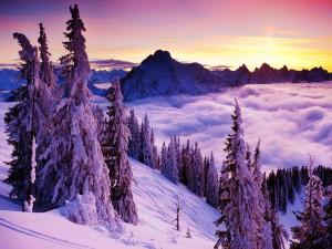 En lo alto de las montañas nevadas