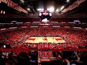Partido de los Chicago Bulls