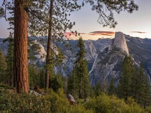 Impresionante vista del Parque Nacional de Yosemite