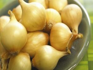 Cebollas en un platillo