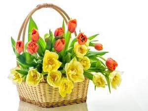 Cesta con tulipanes de color naranja y amarillo