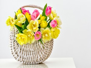 Bellos tulipanes en una cesta de mimbre