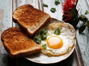 Huevo con dos tostadas