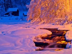 Bella tarde de invierno