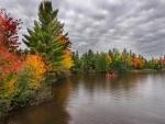 Navegando admirando la belleza del otoño
