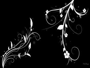 Flores blancas en un fondo negro