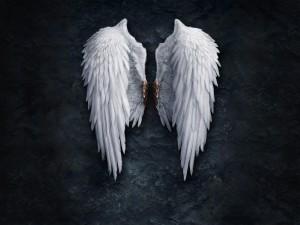 Las alas de un ángel