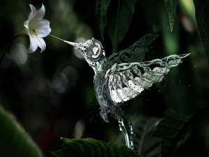 Colibrí mecánico libando el néctar de una flor