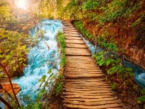 Puente de madera a través del río