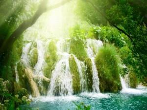 Cascada verde iluminada por el sol