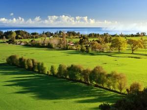 Casas en un prado verde junto al mar