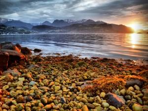 Costa rocosa al amanecer  (Noruega)