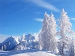 Paisaje nevado bajo un cielo azul