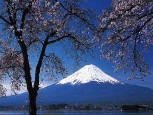 Vista del monte Fuji
