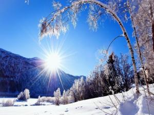 Radiante sol sobre la nieve