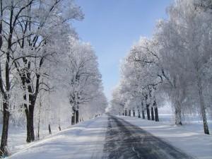 Nieve en la carretera