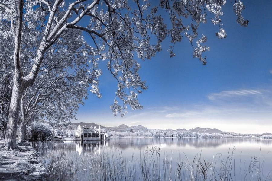 Contemplando el lago