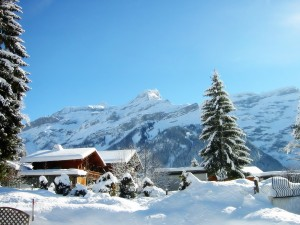 Bonito día en la nieve