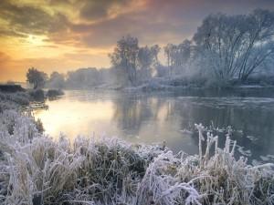 Mañana invernal en el río