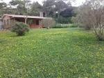 Un verde jardín