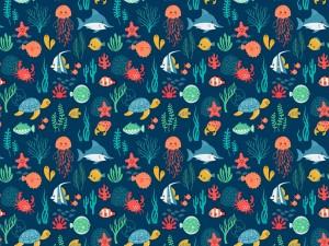 Imagen con animalitos del mar