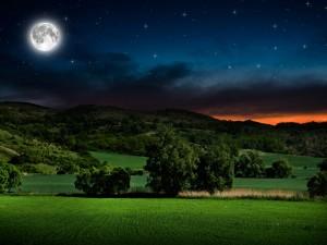 Campo bajo la luna llena y un cielo estrellado