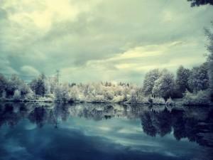 Fría mañana en el lago