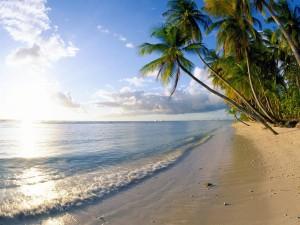 Olas bañando la orilla de la playa