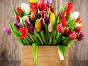 Tulipanes en un recipiente de madera