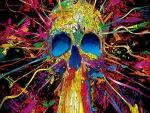 Cráneo colorido abstracto