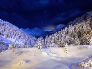 Contemplando el paisaje nevado durante la noche