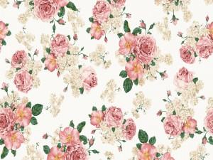 Imagen con flores