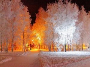 Caminando en una noche fría de invierno