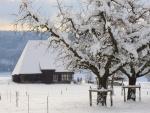 Casa y jardín cubiertos de nieve